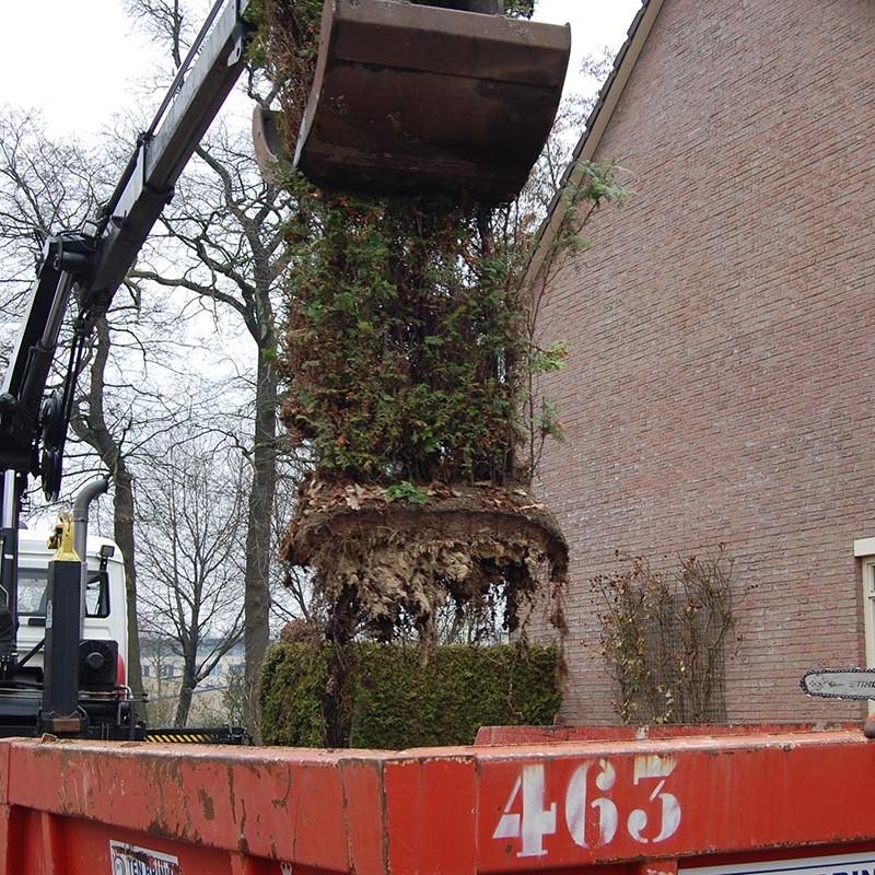 Aanleg tuin en bouw van schutting in Hengelo - 12 van 35