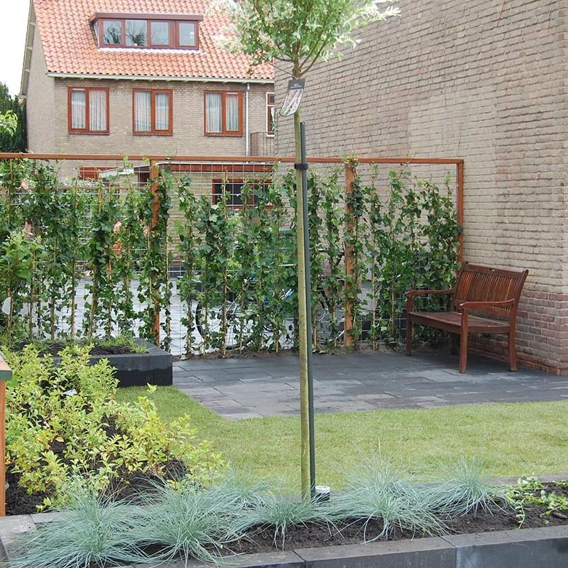 Complete tuin in Santpoort - 5 van 27