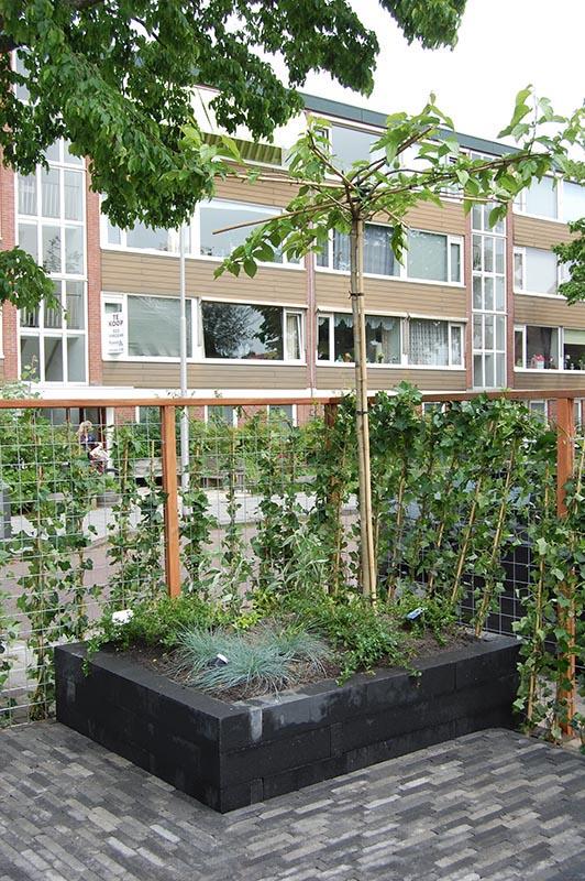 Complete tuin in Santpoort - 8 van 27