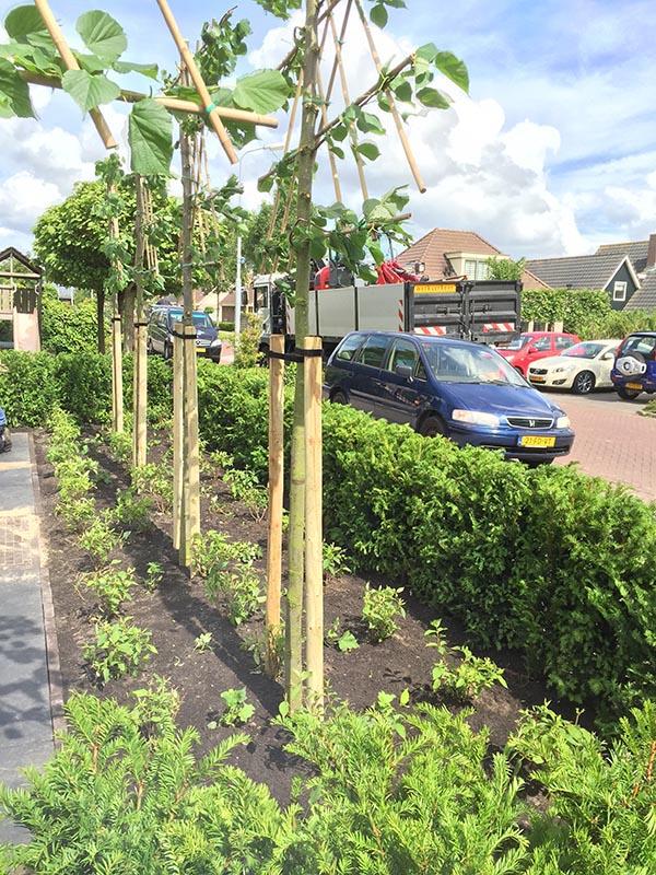 Complete tuin voorzien van tuinmeubulair - 12 van 19
