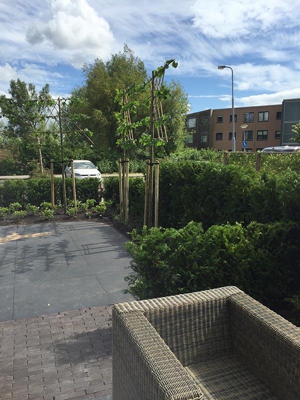 Complete tuin voorzien van tuinmeubulair - 6 van 19