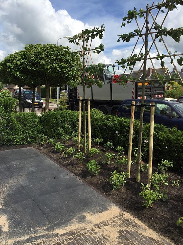 Complete tuin voorzien van tuinmeubulair - 7 van 19