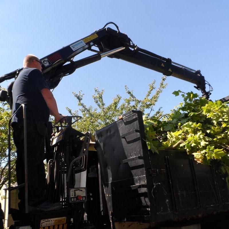 Groot onderhoud bomen Harteheem - 13 van 15