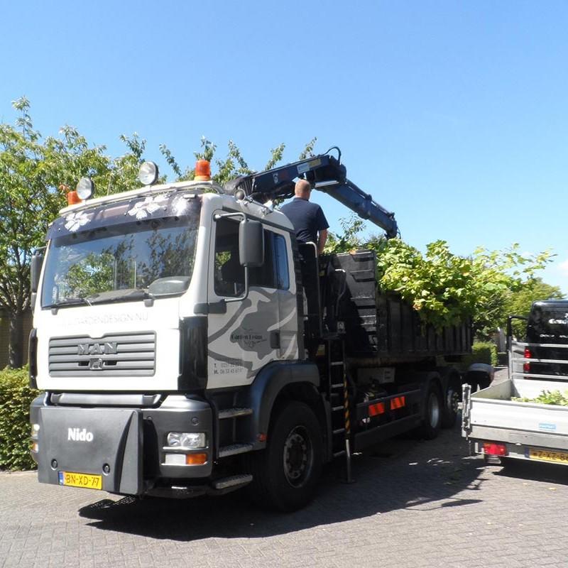 Groot onderhoud bomen Harteheem - 15 van 15