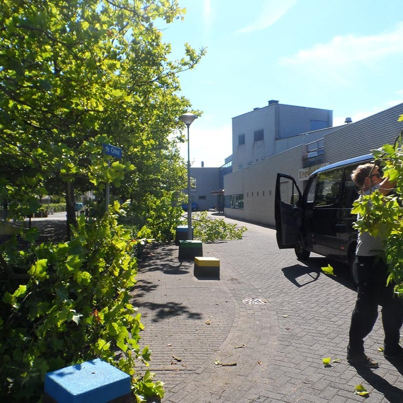 Groot onderhoud bomen Harteheem