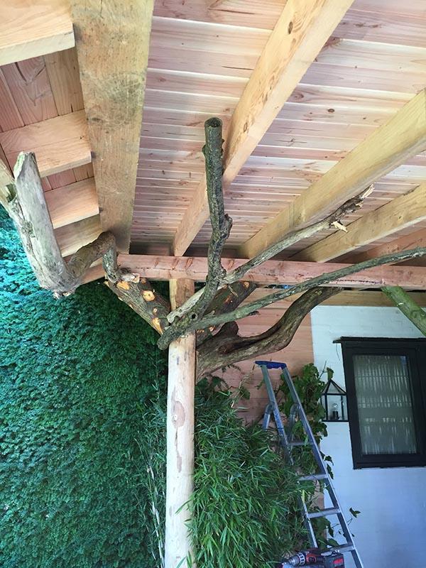 Natuurlijke overkapping van Kastanjehout en Douglas hout  - 23 van 37