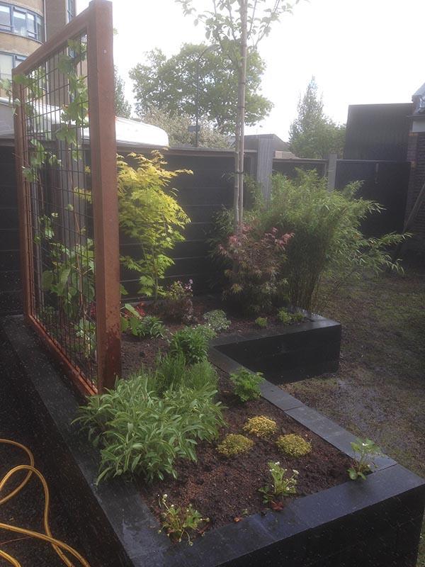 Renovatie van delen achtertuin Beverwijk - 4 van 9