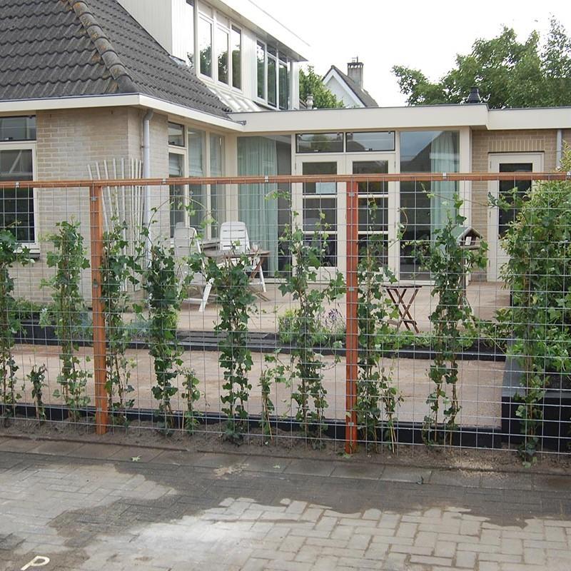 Stakke tuin Castricum - 2 van 22