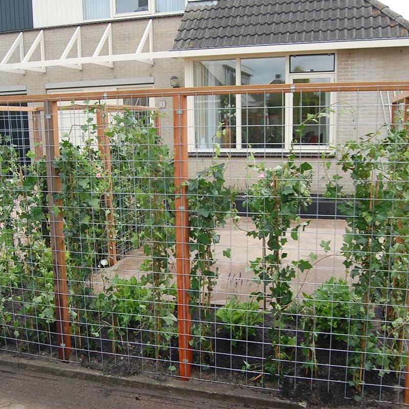 Stakke tuin Castricum - 3 van 22