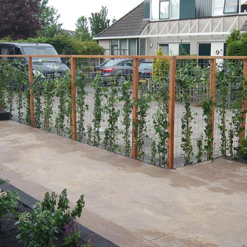 Stakke tuin Castricum - 9 van 22