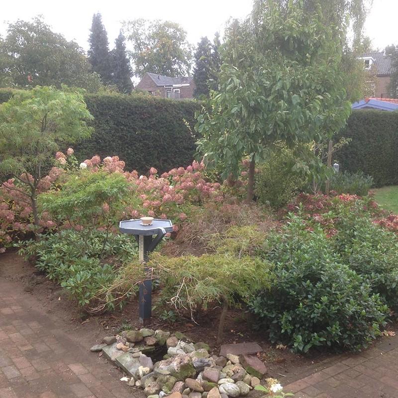 Verhuizen van beplanting naar Nijmegen - 11 van 16