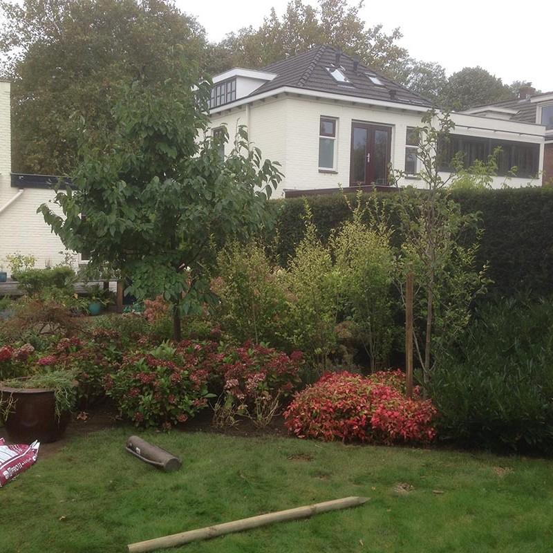 Verhuizen van beplanting naar Nijmegen - 7 van 16
