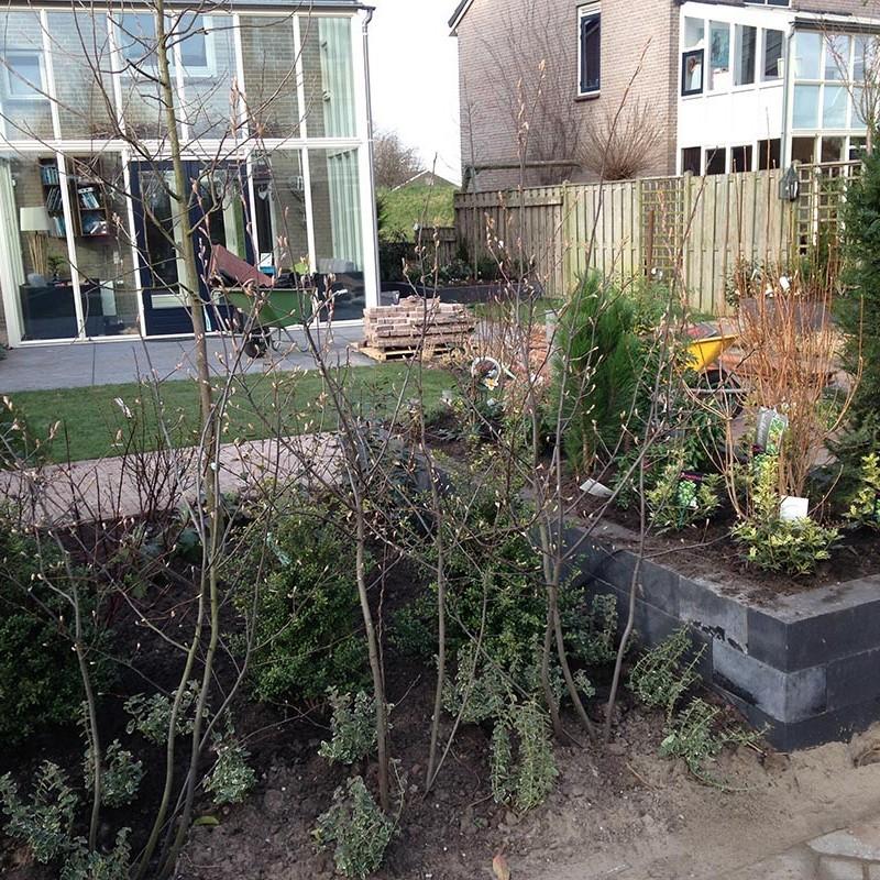 aanleg van tuin in stappen - 41 van 52