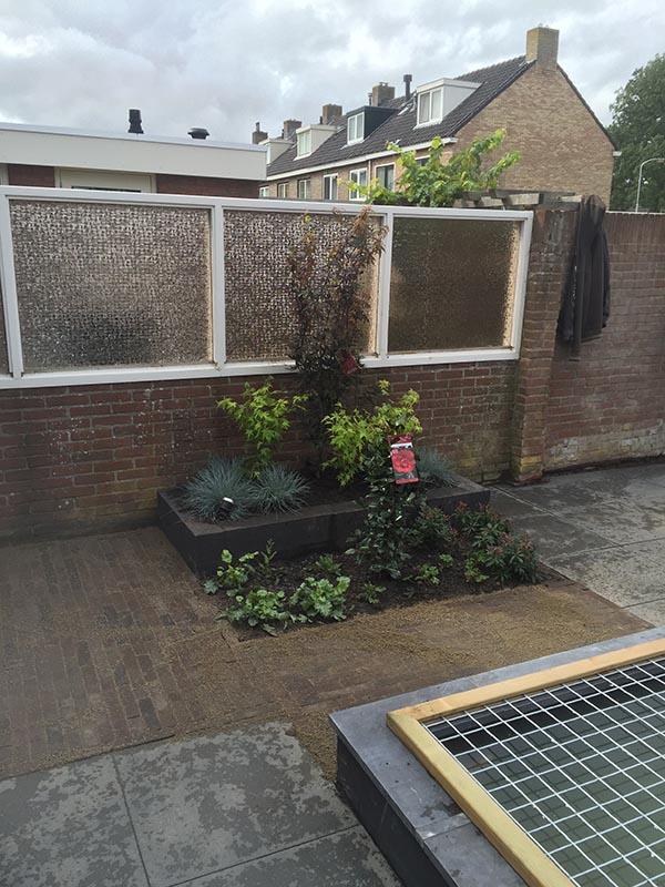 achtertuin met spiegelvijver  - 4 van 21